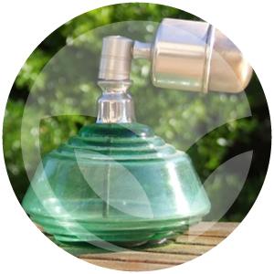 lidervet-blog-perfume