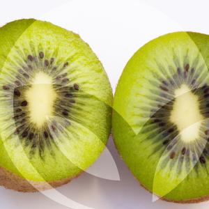 kiwi-BLOG_LIDERVET