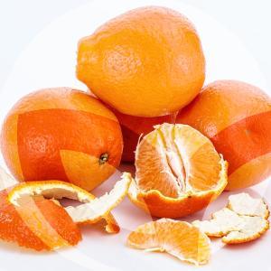 mandarina-BLOG_LIDERVET