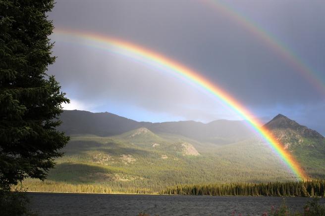 arco-iris-lidervet