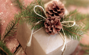 regalos-blog_lidervet